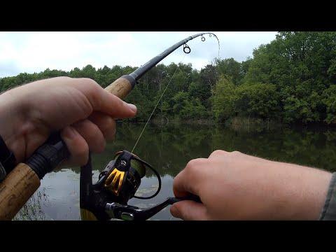 Фидерная рыбалка на красивой речке в конце весны 2020.