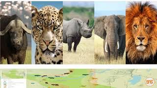 Huu ndio uzuri wa Serengeti!! Ukubwa wake, vivutio vyake, mandhari yake