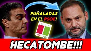VOX IGUALA AL PSOE EN MADRID, SÁNCHEZ SE VENGA DE ÁBALOS, Y PEPE VIYUELA PILLADO COMIENDO CARNE! 😱😱😱