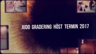 Judo gradering HT 2017 Video