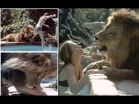 Living with Giant Lion : Young Melanie Griffith and mom Tippi Hedren with their PET LION Neil