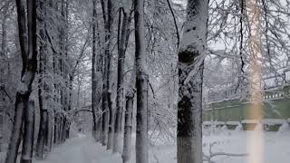 Верасы -- Белый снег (Завируха)