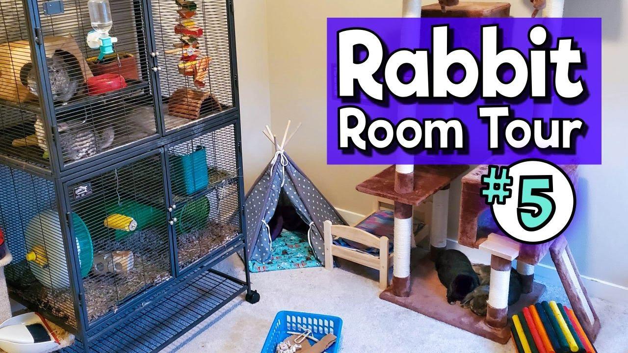 RABBIT ROOM TOUR 5 - Best Bunny Setups!