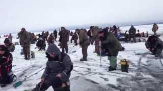 Рабалка на Рыбинском водохранилище