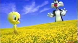 Looney Toonormous Marathon | Cartoon Network | 2009