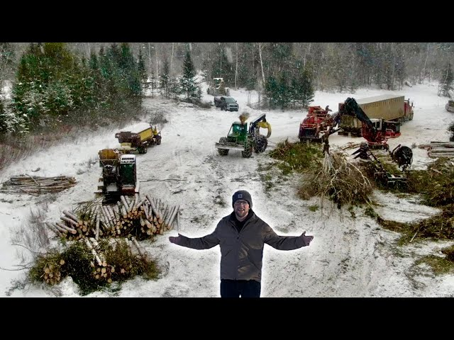 Amazing Logging Operation Happening at our OFF-GRID PROPERTY!! Aerial Journey from WOODS to LANDING