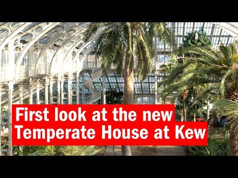 First look at the Temperate House at Kew   First look   Time Out London