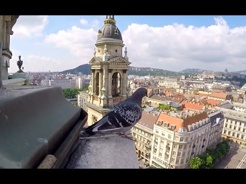 360° view of Budapest HD 1080p