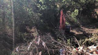 Cort empieza a limpiar el torrente de Sa Riera