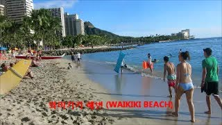 Island Adventures Tours & Travel - Hawaii