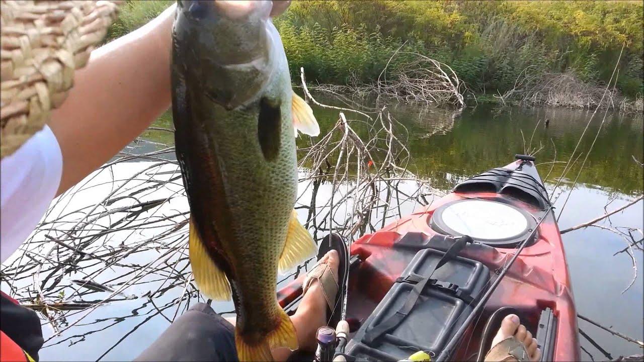 san joaquin river bass fishing