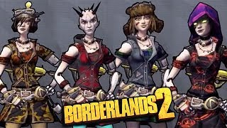 Borderlands 2: Mechromancer Skin Packs DLC