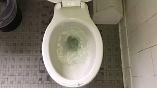 1,073. 1910's J.L. Mott Silentis Toilet!!!!!