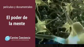 El PODER de la MENTE - FÍSICA CUÁNTICA - Camino Conciencia
