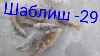 Озеро Шаблиш поиски рыба новая подкормка куда делась рыба рыбы больше нет куда сместилась пиши