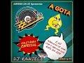 MIX CD ZZ DISCO E A GOTA (AMIGOS DA ZZ) ESPECIAL DE RAPS DJ RANIELE