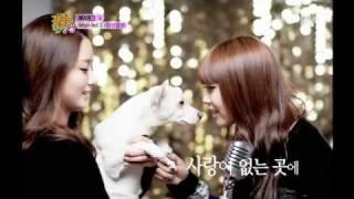 120204  Birth of a Family 은지 - 사랑을 외치다 Eunji - Shout for love