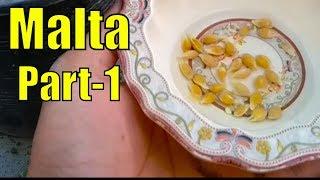 Malta K Seeds Bi Lga Dye Main Ne    Part-1