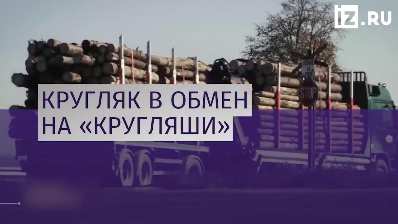 Украина сняла мораторий на экспорт леса-кругляка