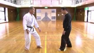 http://taikishiseikenpo.com 「強さを極める」 武術における究極の強さ...
