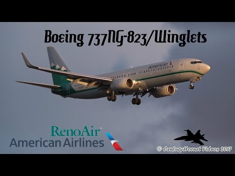American Airlines Reno Air Heritage Livery Landing RWY 24R | Toronto Pearson Int'l