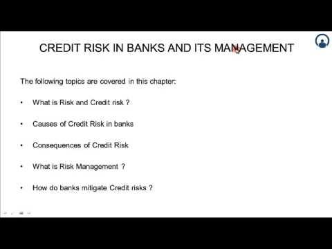 Credit Risk in Banks & its Management