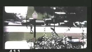 The JFK Assassination - the Last Shot