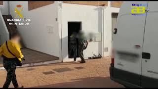 Dos detenidos al descubrir 300 plantas de marihuana tras saltarse el confinamiento
