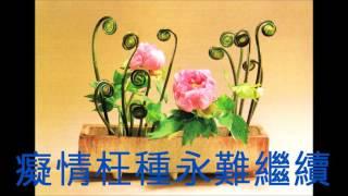 換到千般恨(粵語)-柳影紅 (娛己娛人卡拉OK) - 特大字幕 (舊版)