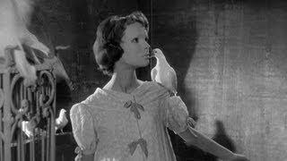 Sam Hamm on Eyes Without a Face