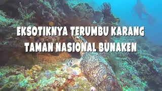 Download Video Eksotiknya Terumbu Karang Taman Nasional Bunaken MP3 3GP MP4