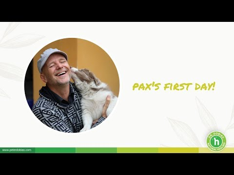 Pax's First Day | Dr. Peter Dobias