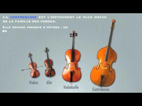 Les instruments à cordes frottées