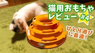 ひとりで遊べるくるくるボール【猫用おもちゃレビュー4】