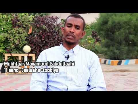 Sheekada Mukhtaar Maxamuud Cabdullaahi oo 11 sano ku xidhnaa jeelasha Itoobiya .