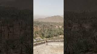 shorts DUBAI 2021 Эмират Фуджейра Начало песчаной бури Самая старая мечеть Сторожевая башня