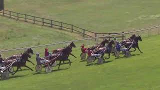Vidéo de la course PMU PRIX DE NIORT