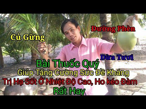 Bài Thuốc Quý Từ Dừa Tươi, Củ Gừng Và Đường Phèn.