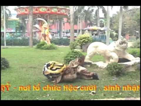Ðoàn Lân Phù Ðổng Q 6  Vo Tong da Ho