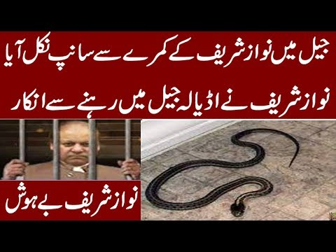 Nawaz Sharif Room Shocking News HD VIDEO URDU/HINDI