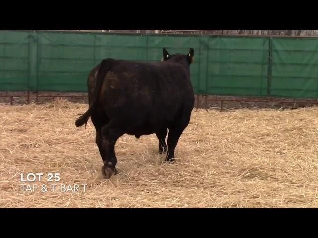 Taliaferro Angus \u0026 T Bar T Angus Ranch - 25