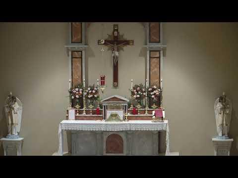 Holy Mass 11/01/2020