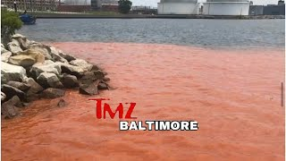 The Baltimore Inner Harbor Water Temperatures Reach 1,000 Degrees Celsuis And It To Turns Blood Red