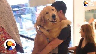 Dog Gets Carried Up Escalator | The Dodo