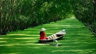 Вьетнам. Перемены и темпы развития поражают. Путешествие в Индокитай(Наше кинопутешествие по Вьетнаму мы начинаем с солнечного Ханоя, расположенного на юге страны. Его Старый..., 2015-07-03T14:17:38.000Z)