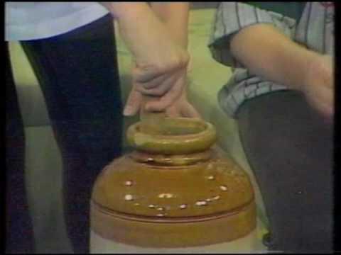 couch potato - dan dan the herbal man makes ginger ale
