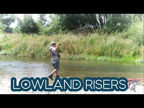 Fishing North Island LowLand's For RISING TROUT!!