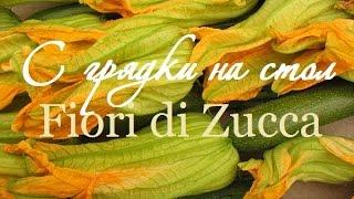 fiori di Zucca - фаршированные цветки цуккини