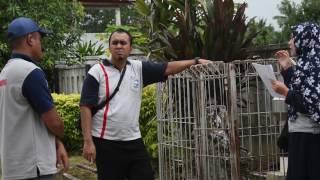 BMKG - Inspeksi Pos Penakar Hujan Kerjasama 2016