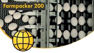 Packing of eggs - Farmpacker 200 - 72.000 eggs/hour (200 cases/hour)